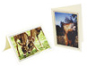 Buy  Photo Greeting Card